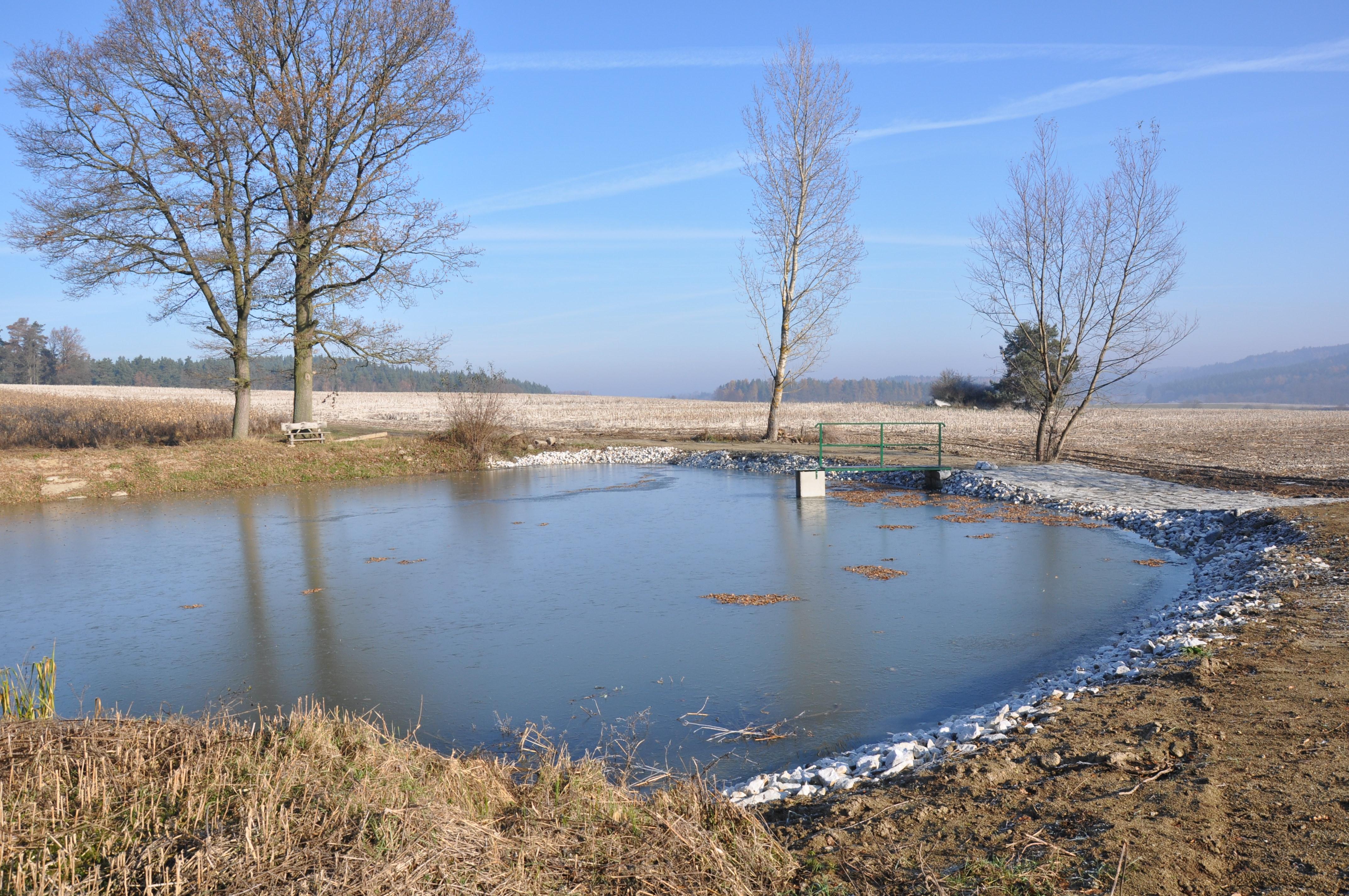 Rybník Doubravice